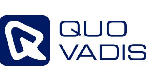 logo qv web blue lowres 0